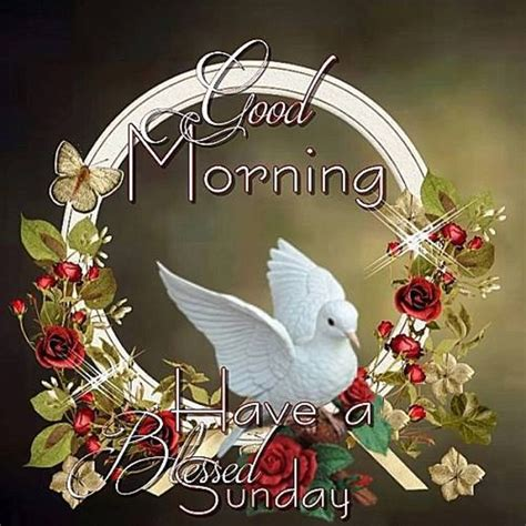 Blessed Sunday Morning Images Morning Wishes On Sunday Pictures Images Page 5