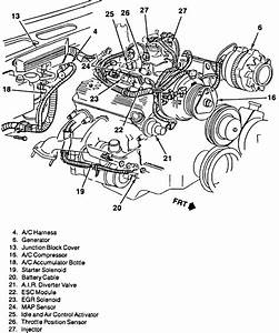 1997 Chevy S10 4 3 Engine Diagram  U2022 Wiring Diagram For Free