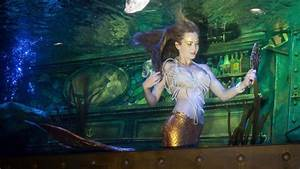 Inside The Mermaid Economy
