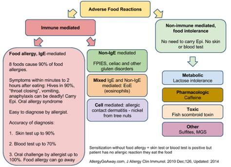 food allergy basics food allergy community  east tennessee