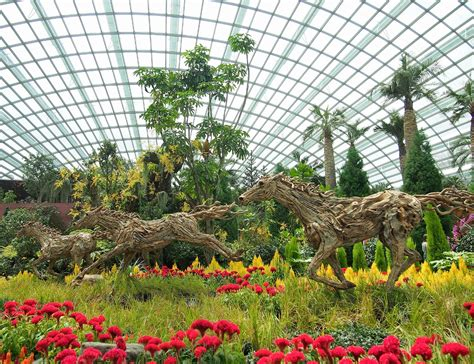 year of the floral display at gardens by the bay