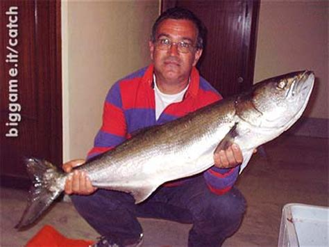 biggameit pesca  mare spinning dalla barca al pesce