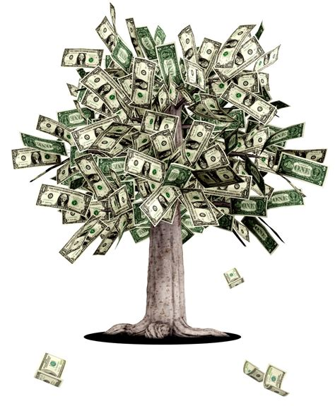 Images Of Money Tree Artha My Difficult Relationship With Money Ambaa Choate