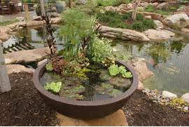Water Garden Even If You Already Have A Large Water Garden In Your Yard You Can