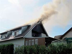Mittel Gegen Wespen Im Dach : wespennest im dach ~ Eleganceandgraceweddings.com Haus und Dekorationen