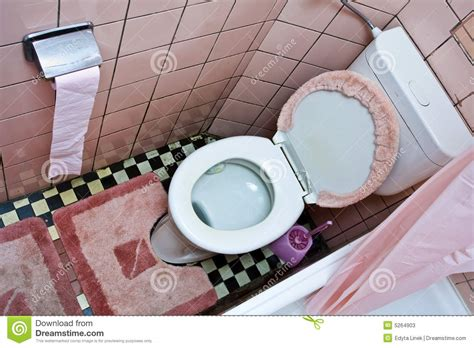 Dirty Toilet Stock Photos  Image 5264903