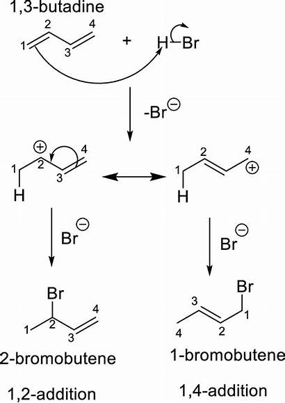 Addition Cyclopentadiene Major Formed Chemistry Organic Hcl