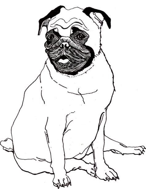 pug coloring pages pug coloring pages best coloring pages for