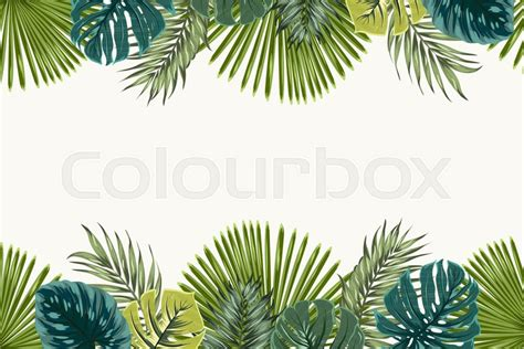 tropical wild templat exotic tropical jungle rainforest stock vector