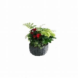 Cache Pot Tressé : composition 39 rouge 39 4 plantes cache pot tress gamm vert ~ Teatrodelosmanantiales.com Idées de Décoration