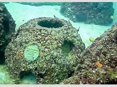 Eternal Reefs » Living legacies that memorialize our loved