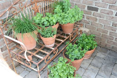 Container Herb Garden Diy Projects Fresh Recipes