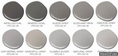 Gray Shades Trending Depot Imgur Homedepot Aisles