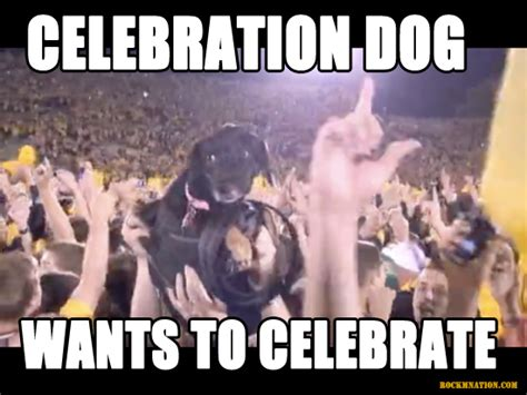 Celebration Meme - happy new year rock m family rock m nation
