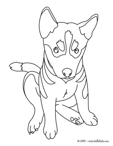 german shepherd coloring pages german shepherd puppy coloring pages hellokids