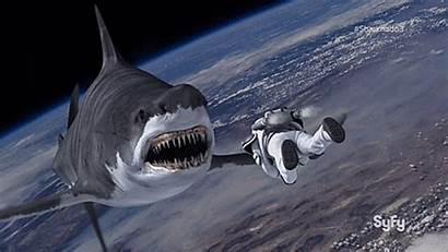 Space Sharknado Animated Syfy Hell Oh Gifs
