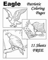 Eagle Coloring Pages Drawings Bald Drawing Patriotic Congress American Continental Symbols Desert Eagles Printable Template 2nd Adult Sketch Getdrawings sketch template