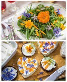 Welche Blumen Kann Man Essen : essbare bl ten ~ Watch28wear.com Haus und Dekorationen
