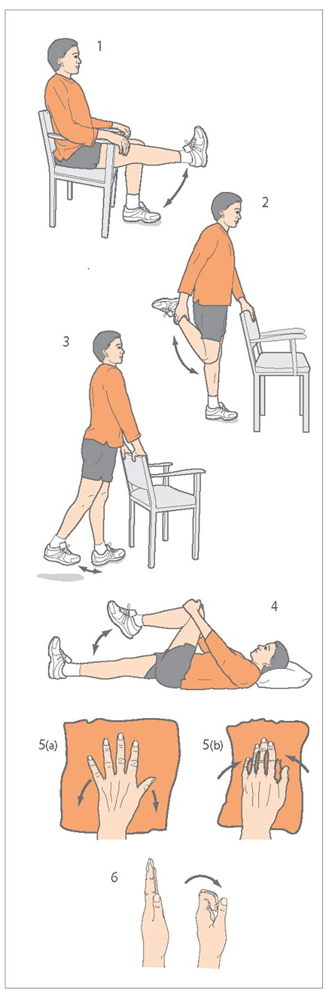 on osteoarthritis information and exercise sheet