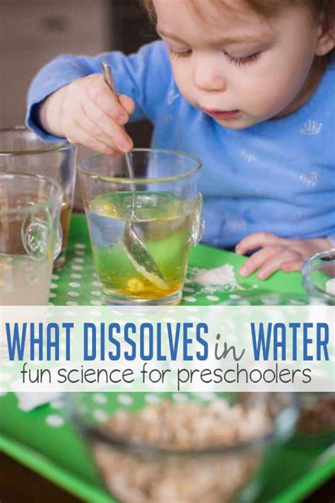 learn what dissolves in water with a preschool science 348 | FEATURE what dissolves in water 2