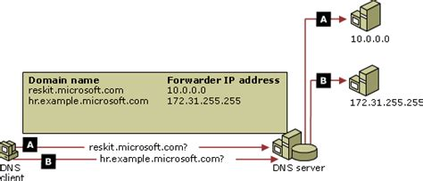 Domain Name System(dns