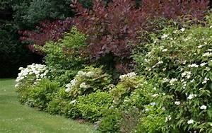 Quand Tailler Les Arbustes De Haies : tailler les arbustes la terre est un jardin ~ Dode.kayakingforconservation.com Idées de Décoration