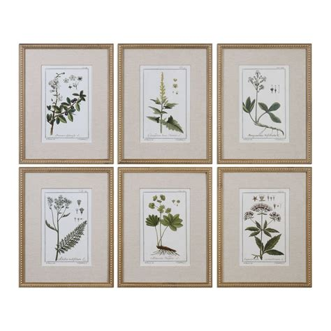 Uttermost Wall Pictures by Uttermost Green Floral Botanical Study Prints S 6 Mathis