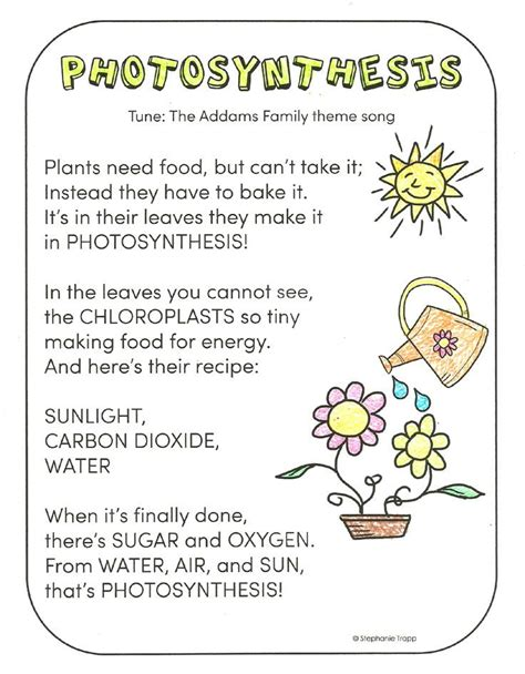 science educational songs free worksheets and photosynthesis for activities other and photosynthesis
