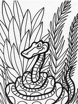 Snake Coloring Jungle Animals Snakes Printable Animal Sheet Library Clipart Coloringkids sketch template
