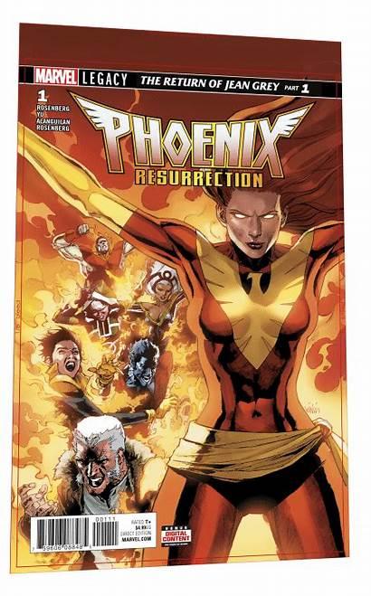 Phoenix Resurrection Jean