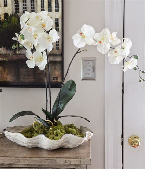 Orchids In A Shell Diy Shell Centerpieces Clam Shells