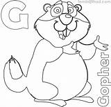 Coloring Gopher Printable Coloringfolder Lovesmag sketch template