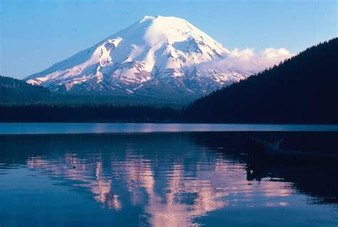 volcanisme les troncs flottant sur les eaux du lac spirit mont helens 233 tat de washington