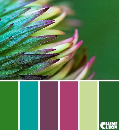 colors that go with emerald green color palette green emerald green pistachio green