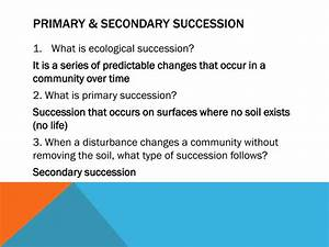 Ppt - 4 3 Succession Powerpoint Presentation