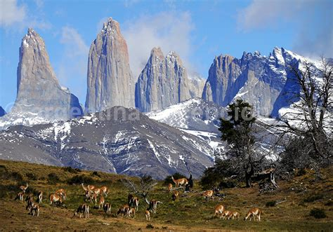 chambres hotes tours voyage en estancia argentine et chili circuit en patagonie