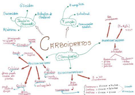 pin de lara sabbatini em mapas vibes  tal carboidratos
