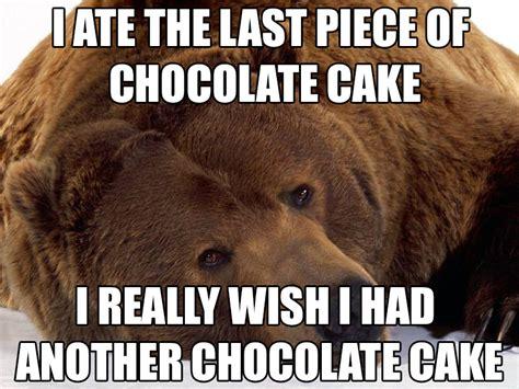 Meme Bear - bear memes image memes at relatably com