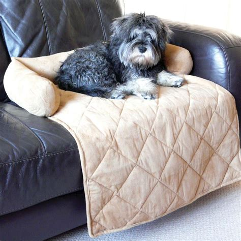 dog blanket for sofa the 10 best charity products for your dog charity