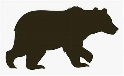 Bear Silhouette Clipart Transparent Brown Polar Caribou