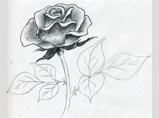 how to draw a rose44 Pencil Drawings Of Flowers And Hearts