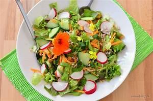 Dressing Für Karottensalat : salatvielfalt leitfaden f r einen gemischten salat dem ~ Lizthompson.info Haus und Dekorationen