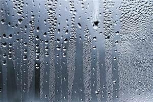 Optimale Luftfeuchtigkeit Im Haus : optimale luftfeuchtigkeit f r ein gutes wohnklima ~ Markanthonyermac.com Haus und Dekorationen