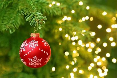 Christmas Tree Hanging Lights Ornament Tradition Branch