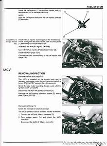 2019 Honda Crf250f Motorcycle Service Manual