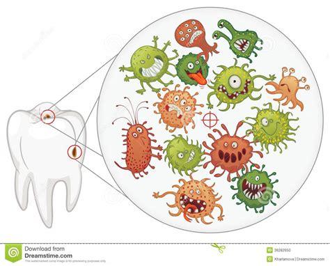 karies lustige bakterien und zahn vektor abbildung bild