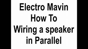 Speaker-parallel Mpg
