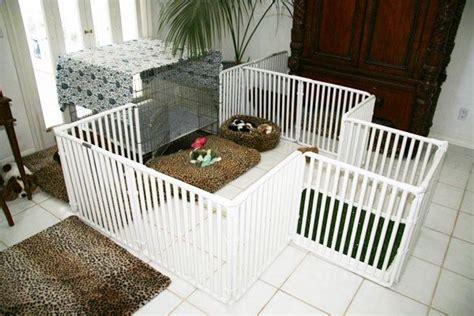 dog playpen indoor dog play area   puppies