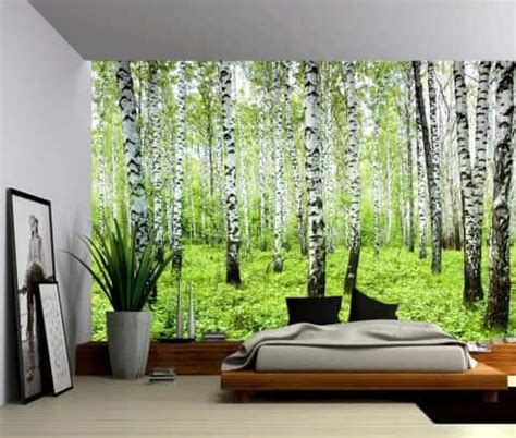 morning sunlight trees wall mural picture sensations