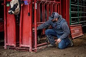 Cattlemaster Series 6  U2014 Tarter Farm And Ranch Equipment